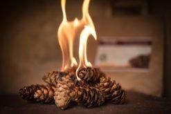 Feuerzündi